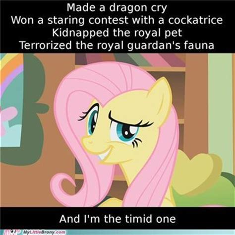 Ponies Meme - mlp meme on tumblr