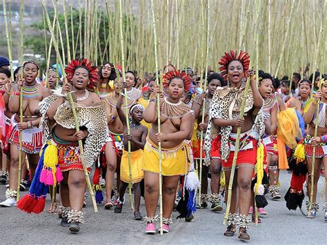 2016 reed dance reed dance all buses transporting maidens to be inspected