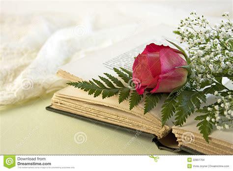 libro old roses libro aperto e una singola rosa rossa fotografia stock immagine di rose fragrante 22851764