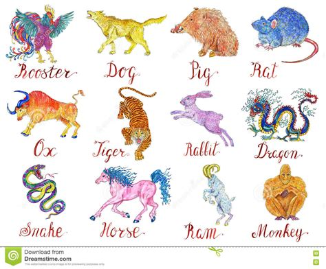 new year animal colors design watercolor set with twelve zodiac animals