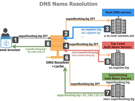 What Is A Dns Lookup Dns Lookup For The Dns Record Domain Name Ip What Is A Dns Superhosting Bg