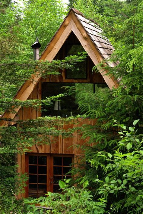 small cabin in the woods man designs builds japanese style tiny zen cabin in the woods