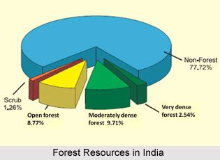 Forest Resources Essay by Essay On Vegetation Of India