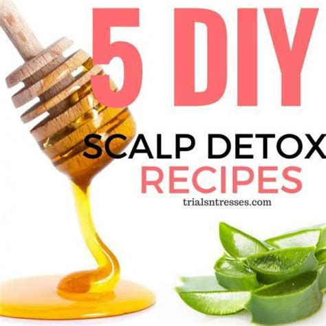 Scalp Detox Recipe 5 diy scalp detox recipes trials n tresses