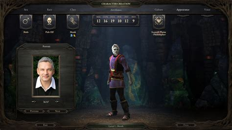 Handmade Portraits - pillars of eternity custom portrait packs and how to add