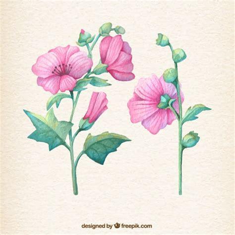 imagenes flores pintadas pintadas a mano flores de color rosa descargar vectores