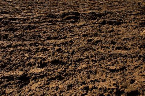 image gallery loamy soil