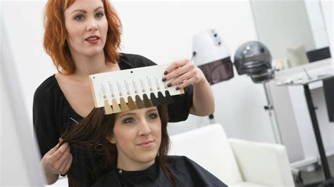the cost hair cut and coloring how much does it cost to dye your hair in a salon
