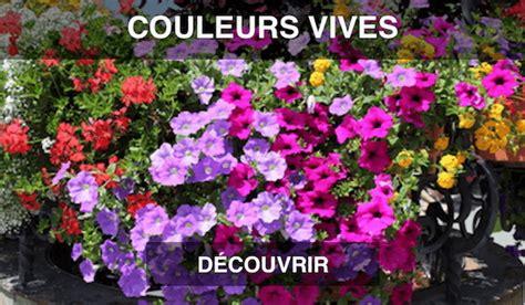Graminées En Jardinière by