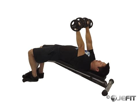 bench press and dumbbell press dumbbell decline bench press exercise database jefit