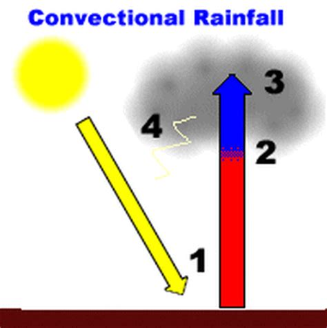 diagram of convectional rainfall 2 types of rainfall myp humanities