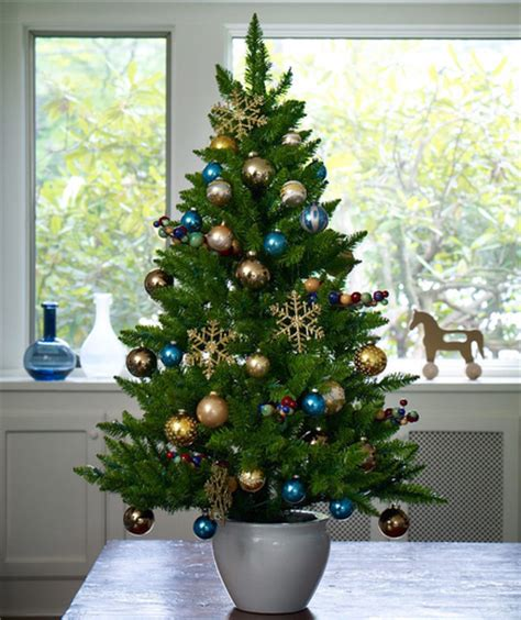 google holiday living mini christmas trees sophisticated mini tree pictures photos and images for