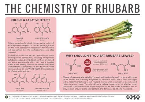 r fruitunion explore reddit r rhubarb