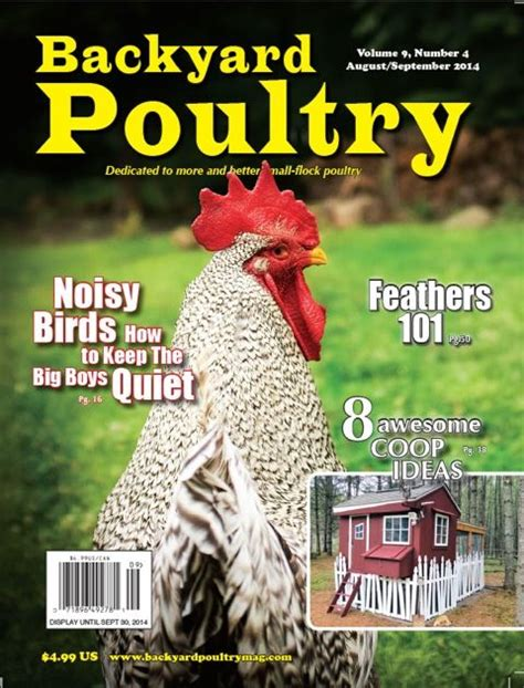 backyard chicken magazine 25 best ideas about backyard poultry on pinterest