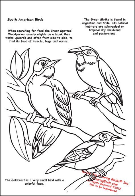 coloring book publishers coloring book publishers butterflies and birds
