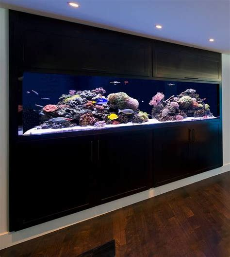 aquarium design for sale 20 of the coolest wall fish tank designs