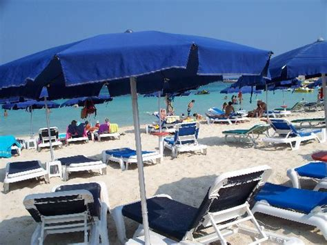 dome beach hotel resort pai ayia napa cypr opinie o beach picture of dome beach hotel resort pai ayia