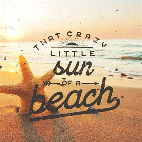 funny summer quotes ideas  pinterest funny summer fun summer quotes  summer games