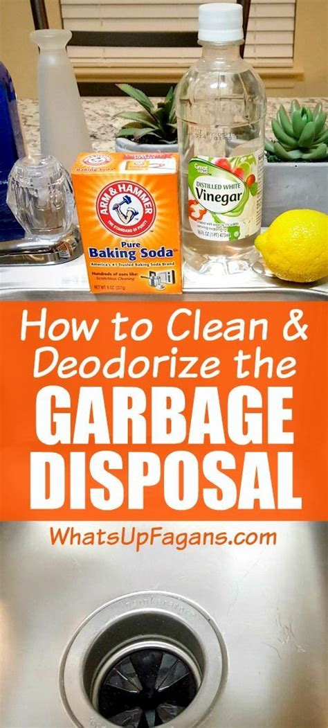 how to clean disposal best 25 clean garbage disposal ideas on pinterest how