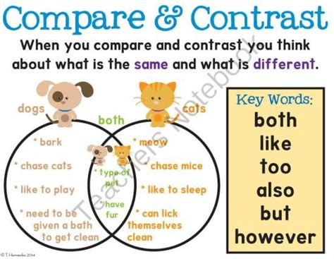 third grade language skill builders compare and contrast