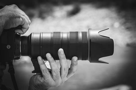 best lens for what s the best lens for wildlife photography nature ttl