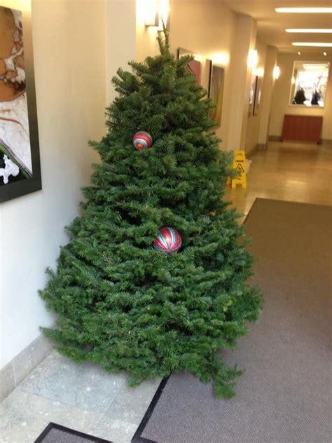 buenas y malas ideas de decoraci 243 n de navidad jobisblog