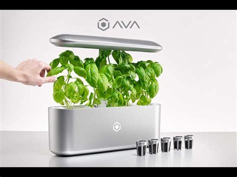 the smart garden ava byte world s best automated indoor smart garden get