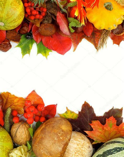 cornici autunno cornici d autunnali foto stock 169 zhekos 52993251