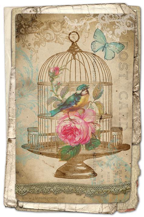vintage images free free printable birdcage card avalon design