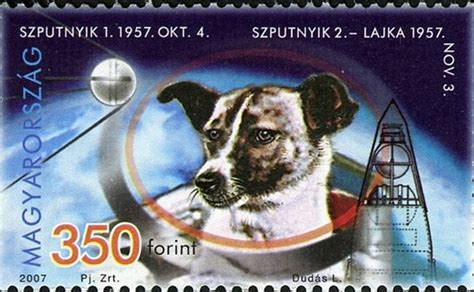 A Spacedogs Tale here is tale in space the doggie