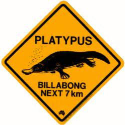 Bear Decorations For Home australian road signs platypus