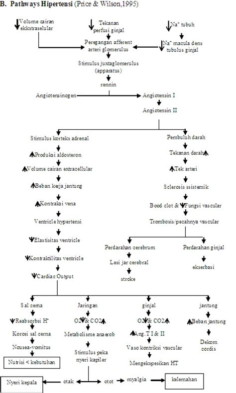 Buku Patofisiologi Dasar Keperawatan Penyakit Jantung Koroner kardiovaskular hipertensi