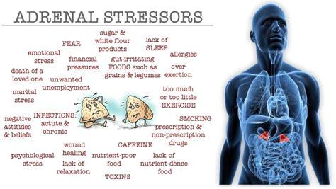 Caffeine Detox Fatigue by Caffeine And Adrenal Fatigue Element109 Drjockers