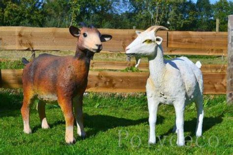 geiten in tuin mooie geiten en bokken decoratiebeelden tuindecoratie