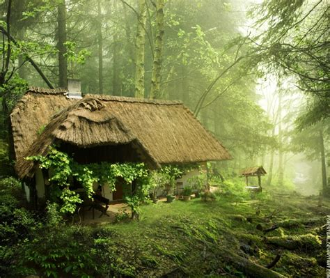 A Cottage In The Woods by 10 Amazing Peaceful Cottages Yeahmag