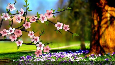 Flower 3d Wallpaper 1209171 flowers 3d parallax pro izinhlelo ze android ku play