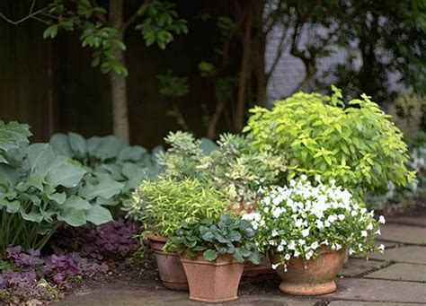 p allen smith container gardens five tips for container gardens allen s p allen