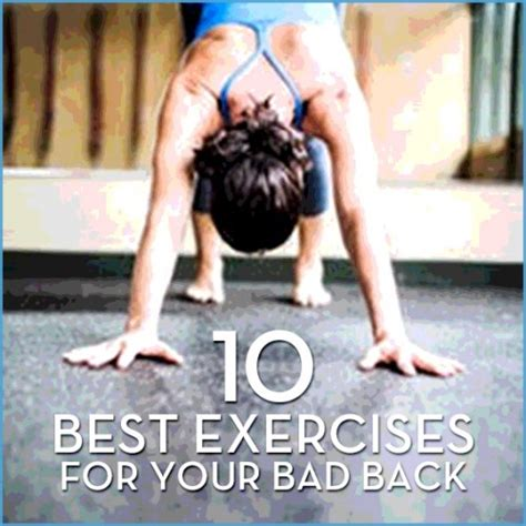 best exercises for bad back burning supplements do they work