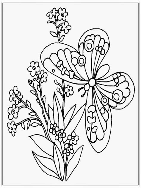 coloring pages for adults butterflies adult coloring pages butterfly realistic coloring pages