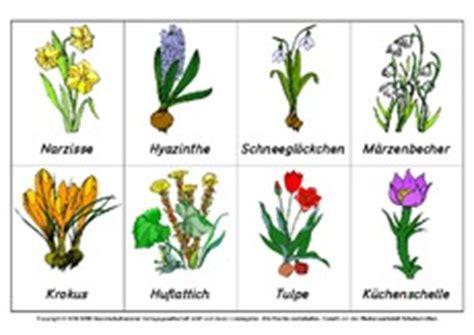 Basteln Kindergarten Frühling by Blume In Der Grundschule Fr 195 188 Hlingsbl 195 188 Fr 195 188 Hbl 195 188