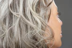 black lowlights in white gray hair pictures of gray hair with lowlights dark brown hairs