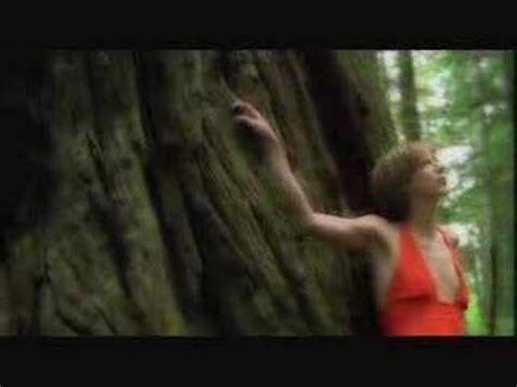 Im To See Beth Orton by Beth Orton Concrete Sky Lyrics