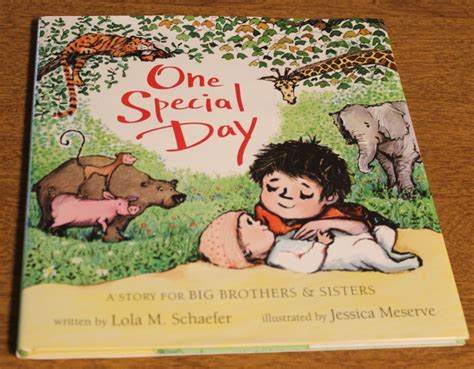 one special day a story for big brothers and books one special day a story for big brothers