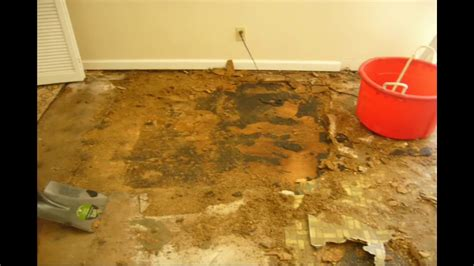 Replacing Water Damaged Particle Board Floors With
