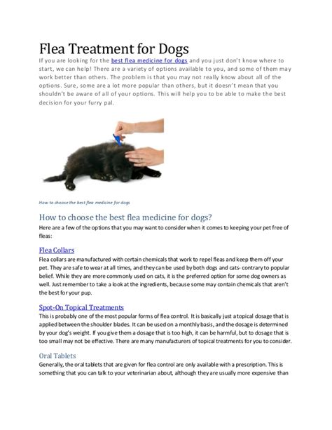 what is the best flea treatment for dogs flea treatment for dogs how to choose the best flea medicine for do