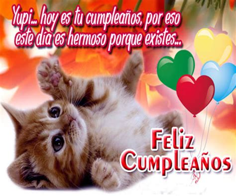 Imagenes Cumpleaños Gatitos | lindas imagenes de gatitos para cumplea 241 os