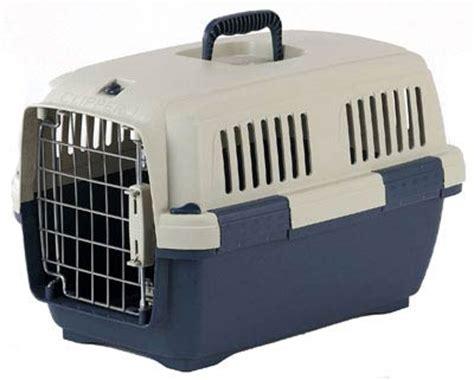 Kandang Kucing Jinjing how to choose a pet carrier