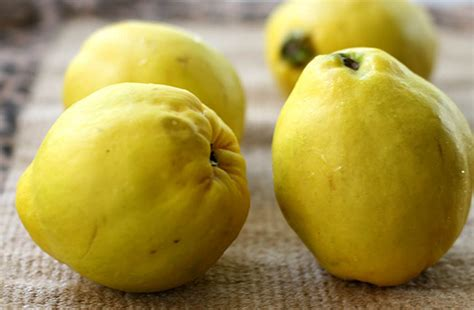 Tea Brewer Morning Quince Teh Morning quince health benefits brighthealing