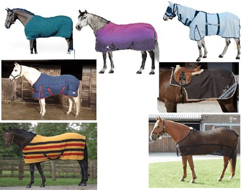different types of rugs for horses name the type of rug