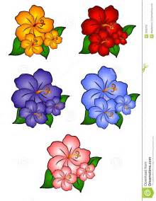 5 hawaiian hibiscus flowers royalty free stock images image 2292319